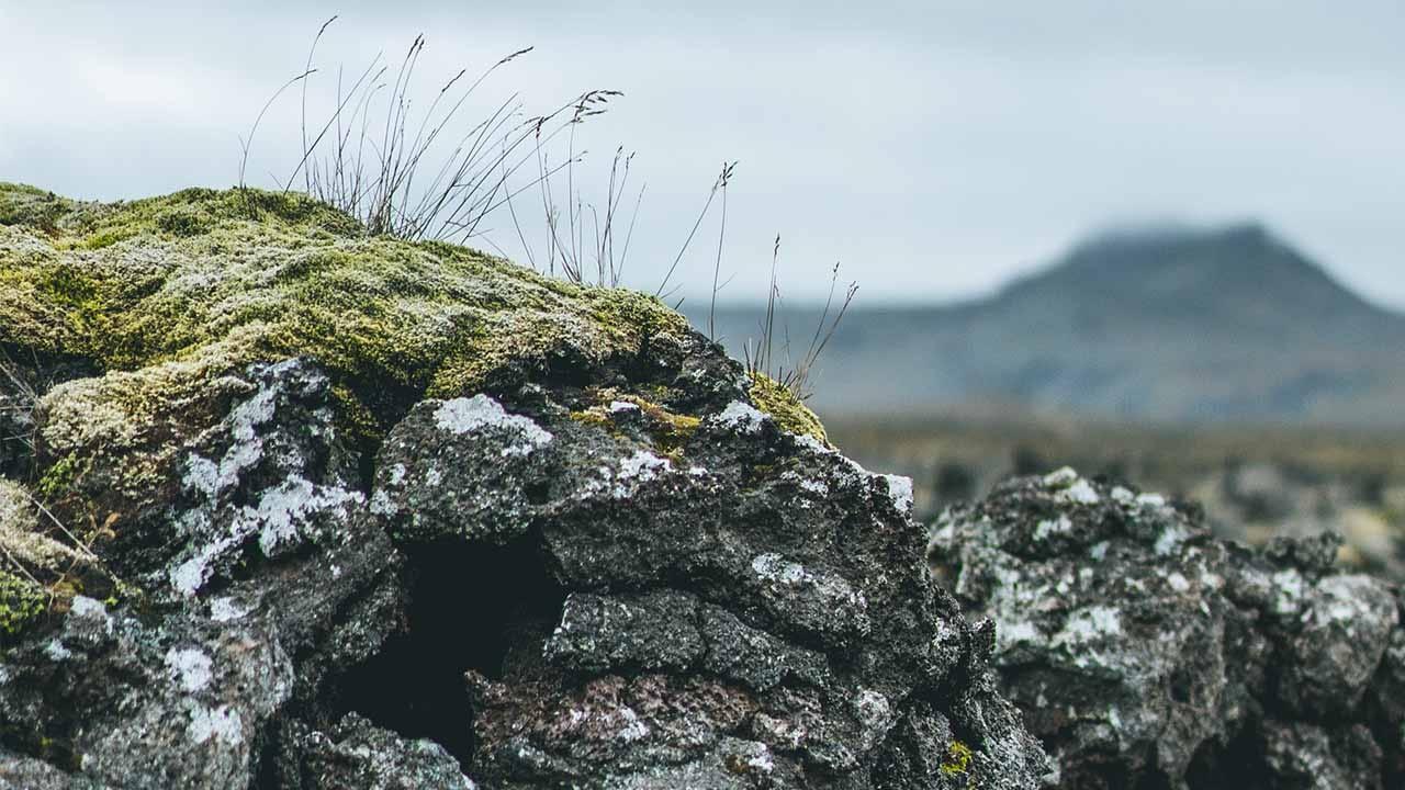 Lögum um náttúruvernd skal fylgja, Landvernd krefst þess að náttúran fái að njóta vafans og sinna lögvörðu réttinda, landvernd.is
