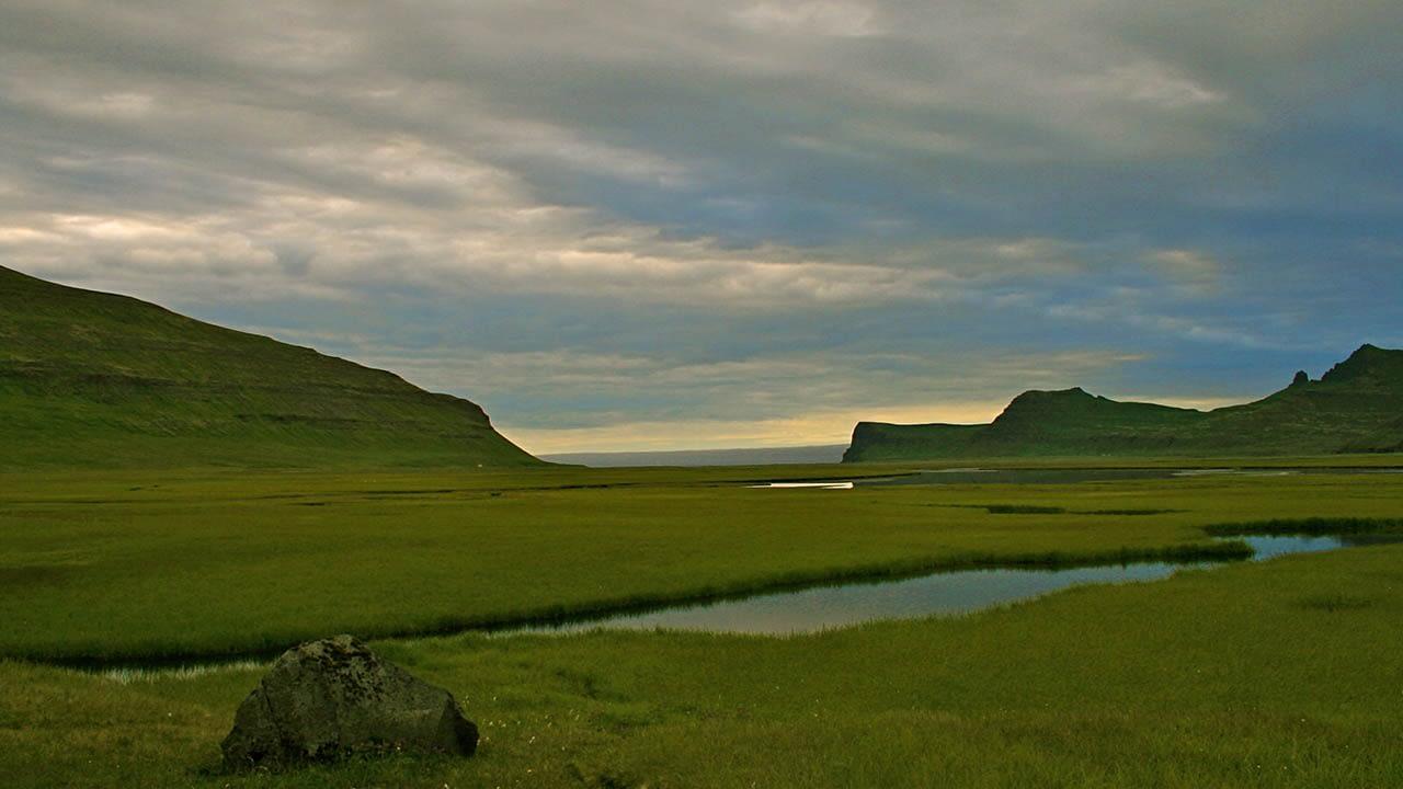 Hornstrandafriðland er einstakt, landvernd.is