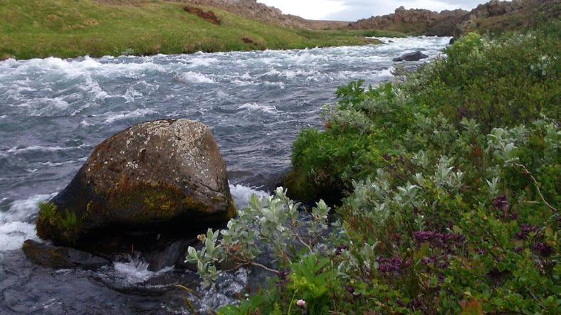 Verndum lindárnar, Svartá í Bárðardal, mynd: Jón Aðalsteinn Þorgeirsson