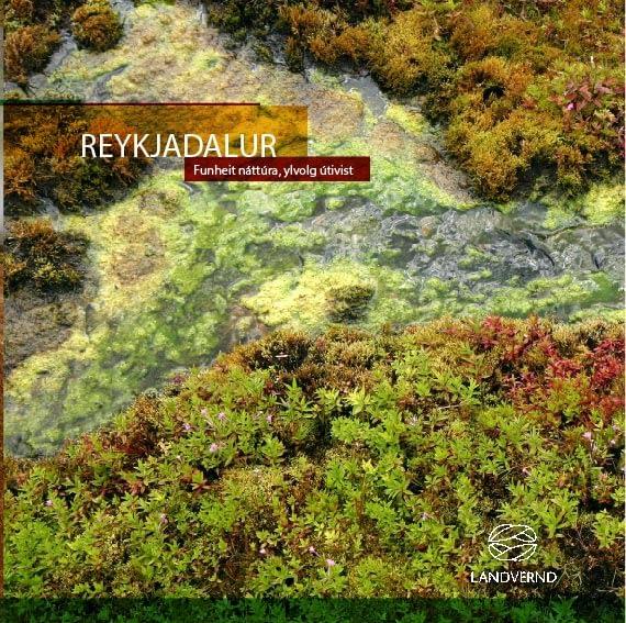 Reykjadalur er einstakt svæði þar sem möguleikar til útivistar eru margir, landvernd.is