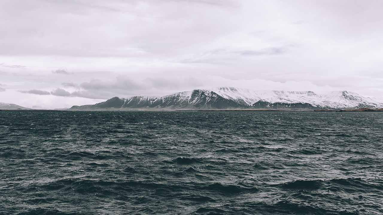 Tilvera mannsins er háð hafinu á margan hátt, okkur ber að gæta að heilbrigði hafsins, landvernd.is