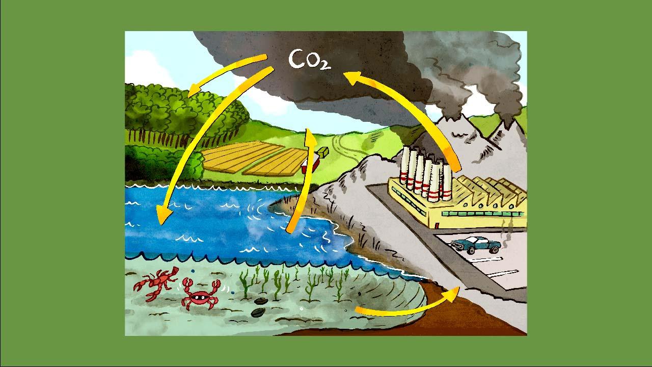 Koltvíoxíð CO2 er í hringrás sem nefnist kolefnishringrás, landvernd.is