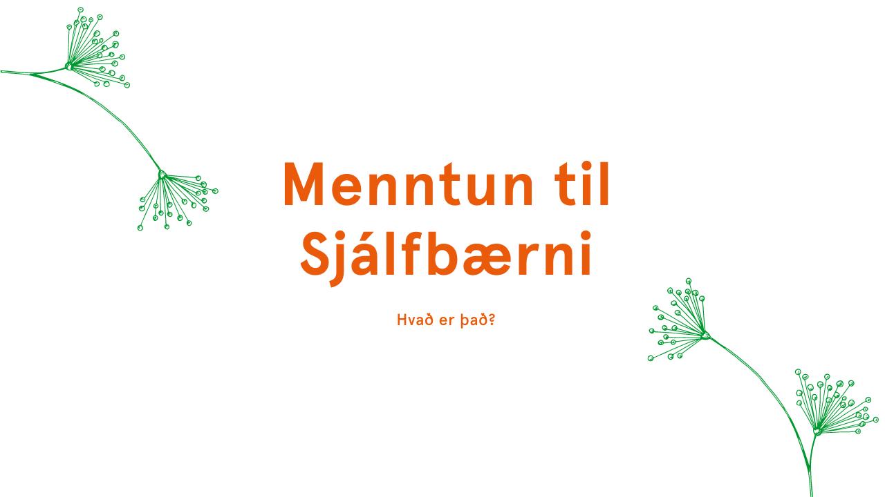 Hvað er menntun til sjálfbærni? Skólar á grænni grein styðja við gæðamenntun í landinu. landvernd.is