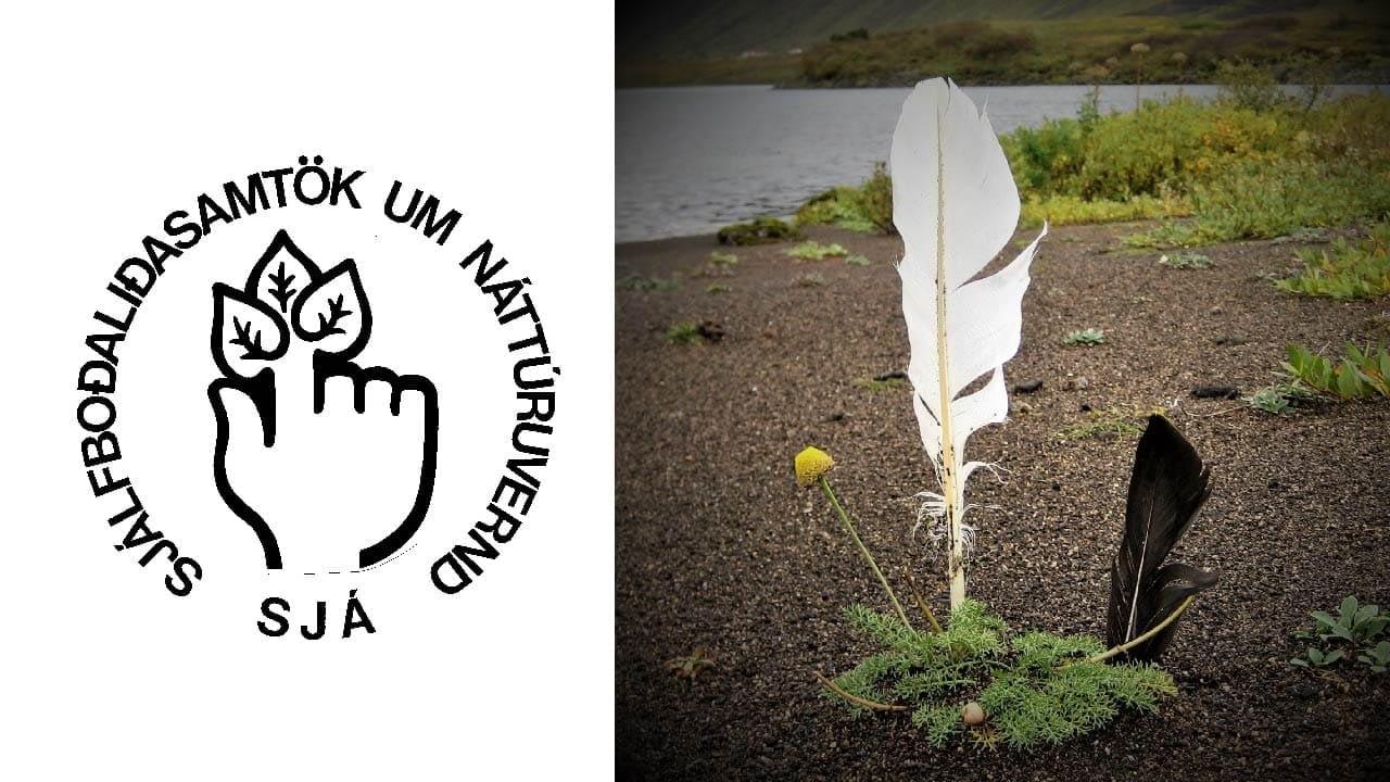 Sjálfboðaliðasamtök um náttúruvernd 35 ára. Logo og mynd af svartri og hvítri fjöður.
