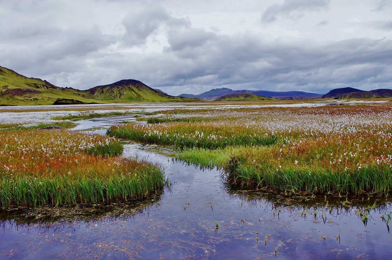 Kýlingar í Friðlandi að Fjallabaki, hálendisþjóðgarður tryggir aðgengi og vernd náttúrunnar, landvernd.is
